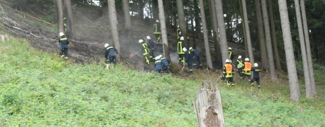 Heute Nachmittag wurden wir mit der Feuerwehr Höringhausen zu einem Waldbrand zwischen Höringhausen und Sachsenhausen alarmiert. Nachdem wir den Brandort [...]